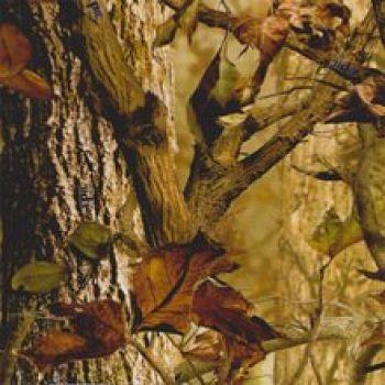 Camouflage autumn